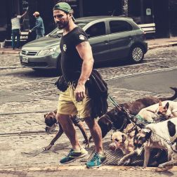 Dogs in Buenos Aires – No. 15