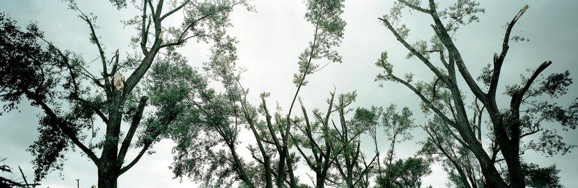 Orkan Ela – No. 05